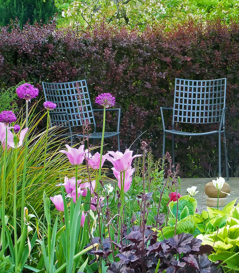 Garden Design Sheffield Suburban Garden 4